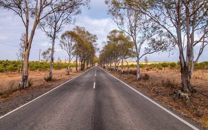 algarve estrada