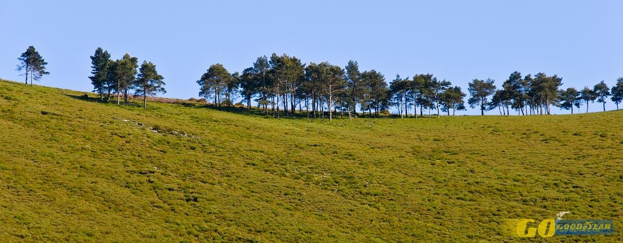 Senhora da Graça: Encosta do Monte Farinha