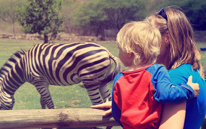 Crianças no Zoo