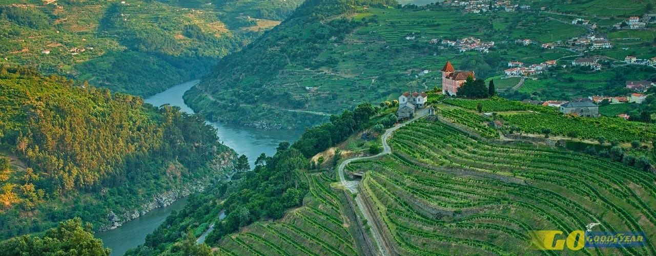 N222: conduzir ao ritmo das águas do Douro