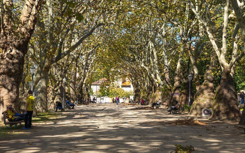 Espaços verdes e Jardins do Porto: 5 ideias românticas