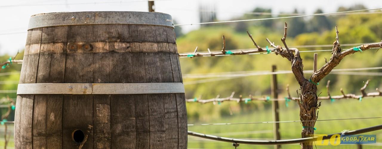 regiões vitivinícolas