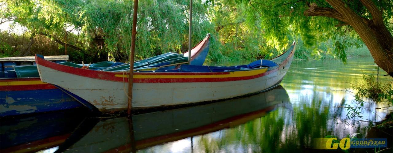 De barco em Salvaterra de Magos