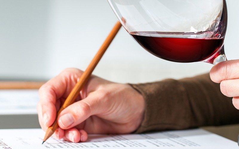 Técnicas e conselhos para uma degustação de vinho perfeita